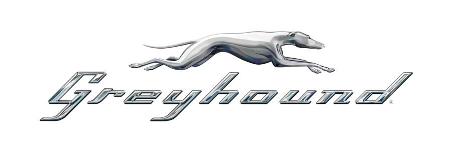 Greyhound white