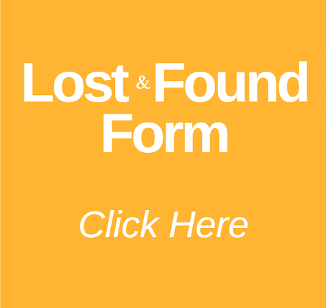 Lost and Found form button gold