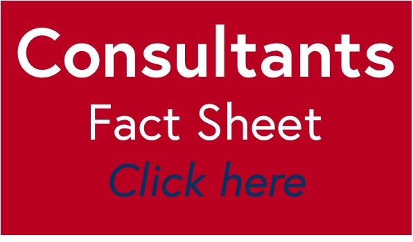 Consultants fact sheet tile red