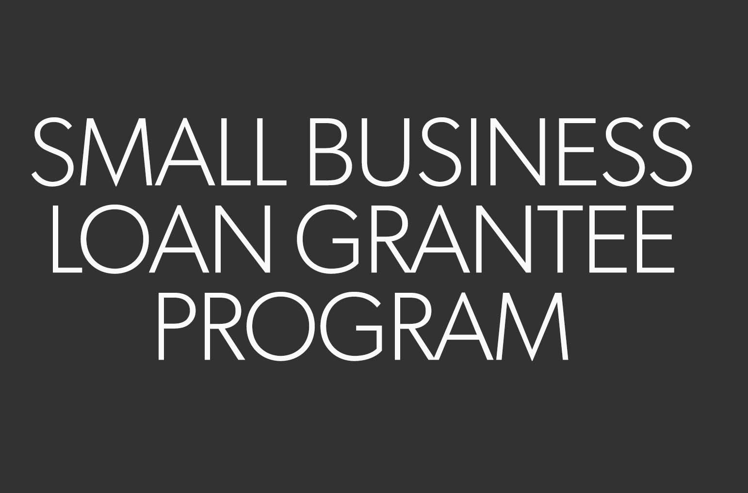 Small business loan grantee program