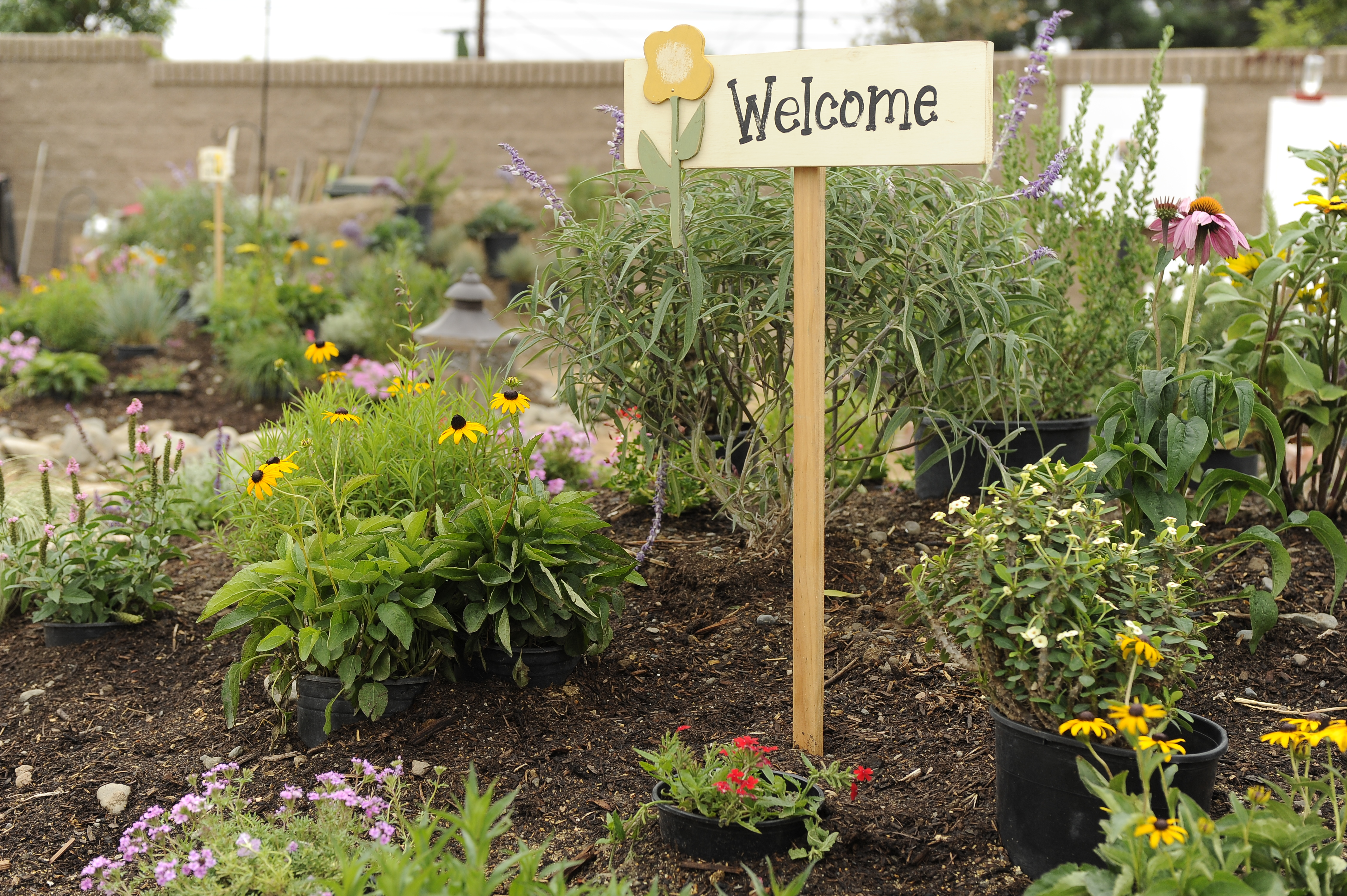 Garden welcome sign in a flower garden