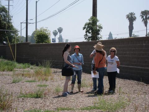 Group of women standing around the empty lot