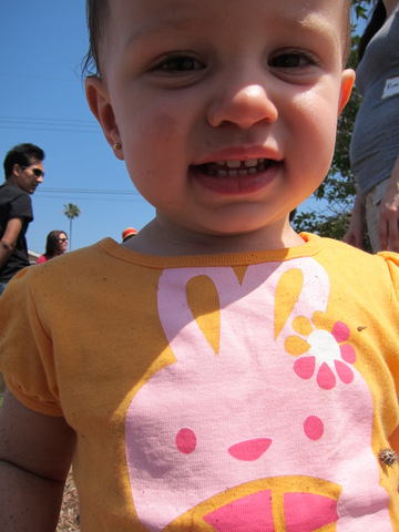 little girl wearing a bunny shirt