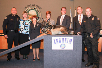 Group photo with police dog on stand