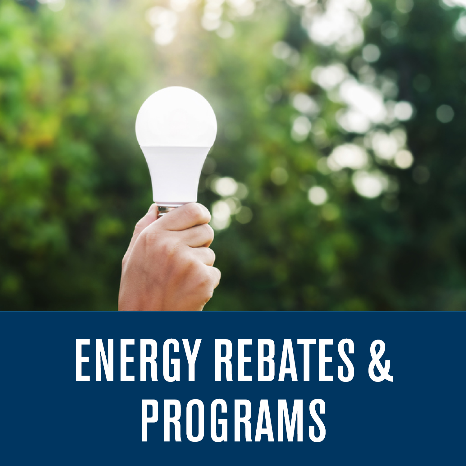 Energy Rebates Programs