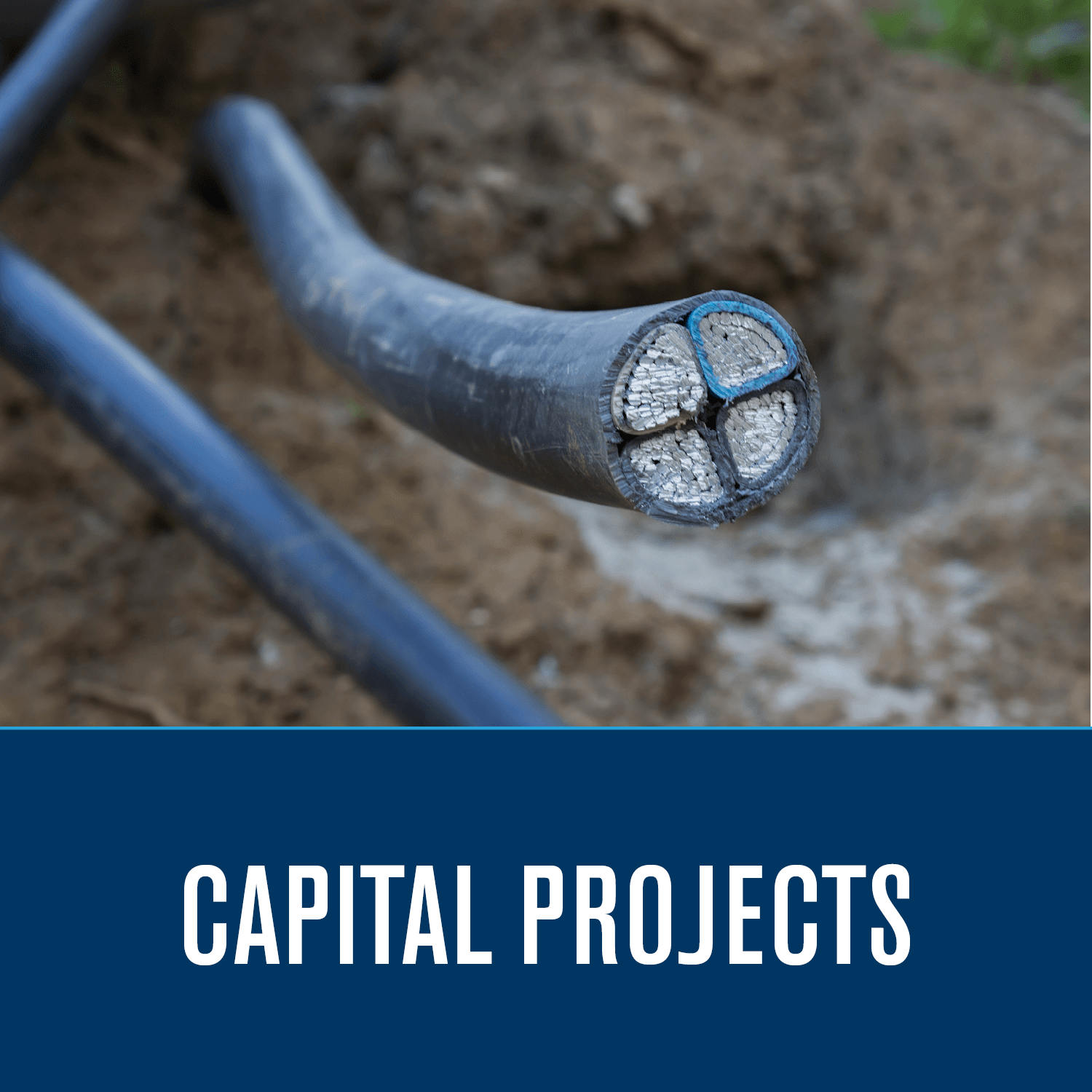 Electric Capital Projects