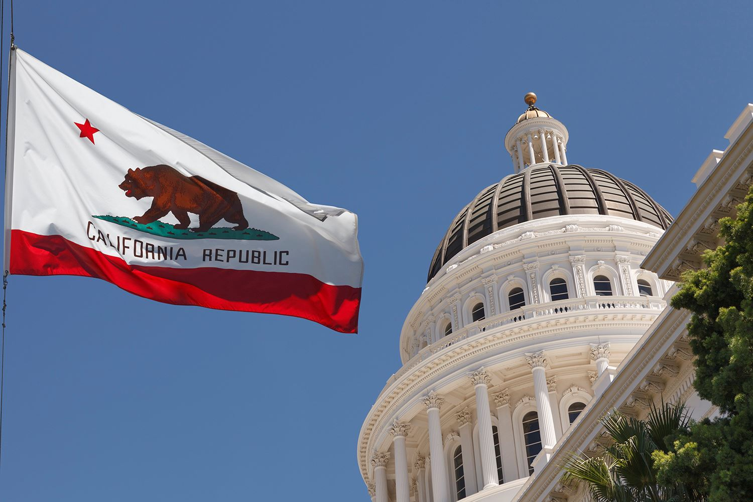 CA State Flag Capital