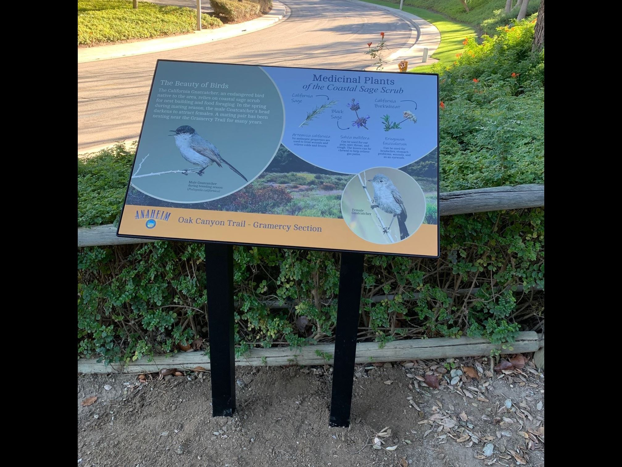 Interpretive Sign